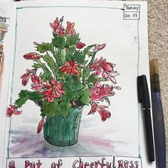 The Christmas Cacti in full bloom! 😍🌷🌸 Have a great weekend everyone! #caobeckysketch #artjournal #artoftheday #artaddiction #art_everywhere #illustrations #illustratemyworld #visualdiary #visualjournal #handdrawing #handdrawnart #sketch #sketchbook #moleskine #art #artlife #artnerd #artstagram #drawingoftheday #iloveart #sketching #illust