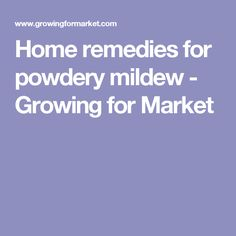 Home remedies for powdery mildew - Growing for Market