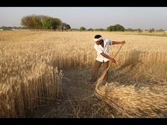 Scythe Project in India 2016 - YouTube