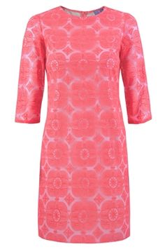 Vilagallo Class Lace Shift Dress for Women in Coral Pink