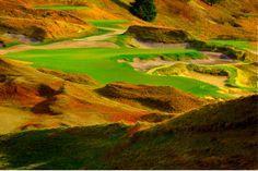 Chambers Bay Golf Course   Tacoma, WA photo by gsromjue
