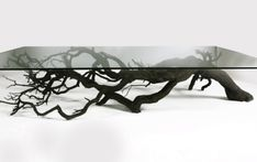 Found Fallen Tree Branch is Repurposed into Beautifully Unconventional Shelving - My Modern Met