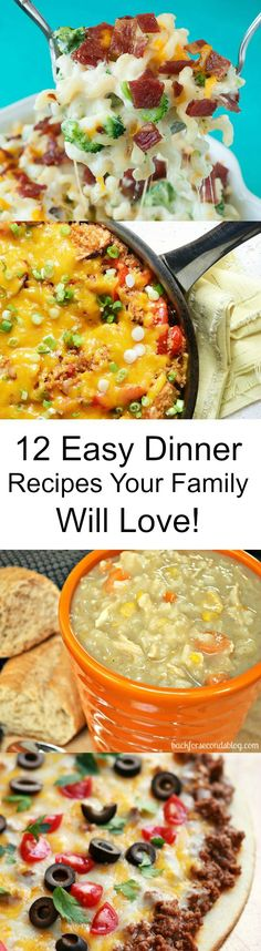 12 Easy Family Friendly Meals!