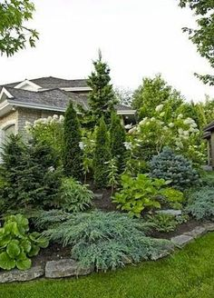 Check right here for Outdoor Landscaping Ideas Privacy fence landscaping Privacy landscaping Large yard landscaping Evergreen landscape Fence landscaping Front yard land. Privacy Fence Landscaping, Small Front Yard Landscaping, Landscaping Trees, Backyard Privacy, Backyard Fences, Outdoor Landscaping, Landscaping Design, Inexpensive Landscaping, Sloped Backyard