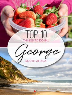 Top 10 things to do in George on the Garden Route of South Africa that the whole family will enjoy. George South Africa, Stuff To Do, Things To Do, Kruger National Park, Africa Travel, Family Travel, Traveling By Yourself, African, Road Trips