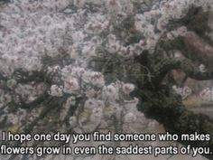 I hope one day you find someone who makes flowers grow in even the saddest parts… Film Quotes, Poetry Quotes, Jolie Phrase, Find Someone Who, Beautiful Words, Inspire Me, How To Dry Basil, Wise Words, Decir No