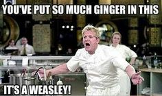 Even some more harry potter humor from Gordon Ramsey