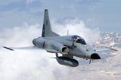F-5E Tiger II Fighter