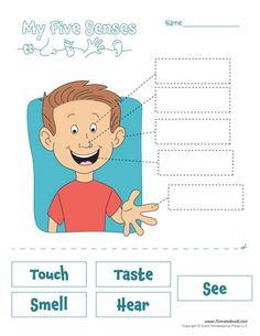 printable 5 senses worksheet classroom printables five senses worksheet 5 senses worksheet. Black Bedroom Furniture Sets. Home Design Ideas
