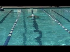 How to Swim : How to Swim the Butterfly Stroke