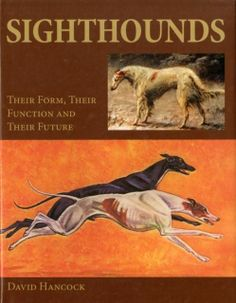 Sighthounds: Their Form, Their Function and Their Future by David Hancock (Hardback, for sale online Greyhound Art, Italian Greyhound, Lurcher, Black Horses, Hunting Dogs, Working Dogs, Four Legged, Ancient History, Old Photos