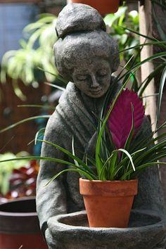 Duas belezas juntas...a Gueixa enfeitando um Jardim :)