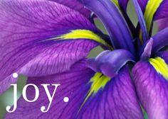 Joy Beyond All Telling | CatholicMom.com - Celebrating Catholic ...