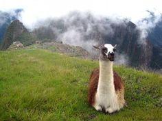Be #wanderlust Machupicchu, Cusco, Peru