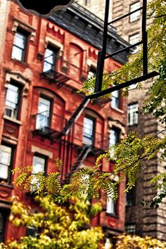 West Village Brownstones, NYC