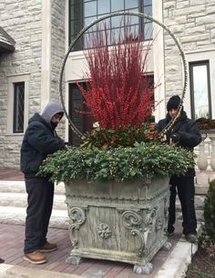 If you've frequented Detroit Garden Works during the winter& season in the past 4 or 5 years, you've seen Rob's light rings. Inspired a number of years ago to wrap a trio o… Outdoor Christmas Planters, Christmas Urns, Christmas Greenery, Christmas Arrangements, Winter Christmas, Christmas Wreaths, Christmas Crafts, Commercial Outdoor Christmas Decorations, Fall Planters