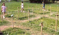 Arrow Maze, Howell Farm, 1999