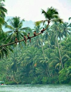 Hanging out in Indonesia