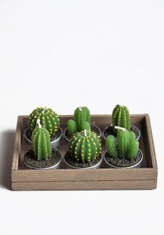 Cactus Tealight Candles from www.threadsence.com  Wow, this cutie costs $14, but will bring delightful life to any spaces