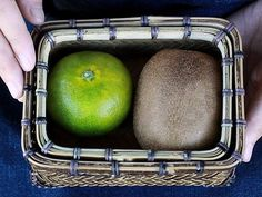 虎竹網代ミニ弁当箱 ランチボックス lunchbox 虎斑竹 tigerbamboo 虎斑竹専門店 竹虎