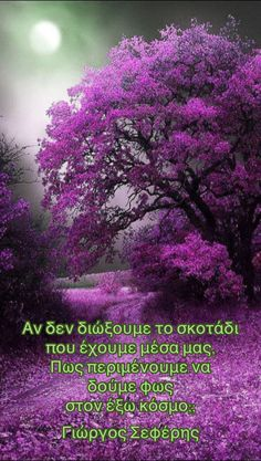 Beautiful tree in purple Beautiful World, Beautiful Places, Stunningly Beautiful, Beautiful Moon, Beautiful Morning, Beautiful Smile, Amazing Places, Wonderful Places, All Things Purple