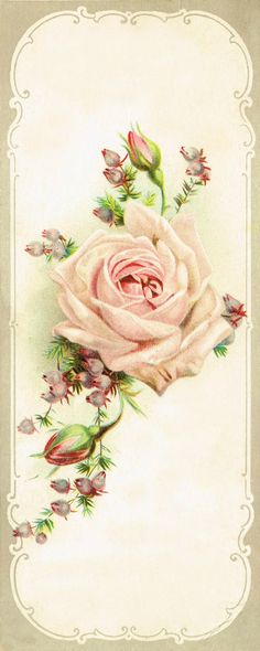 Antique Rose- Book Mark..S.M. Lutz. leader in the Piano trade.  Decatur, Ill.....image via knickoftime.net
