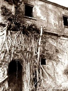 Top 5 Haunted Places In India That Has Big Stories Behind