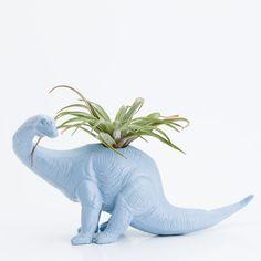 Dinosaur Planter with Air Plant Room Decor College by boygirltees, $20.00. Genius
