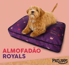 Seu patudo vai adorar um descanso de rei! #patudos #pets #dog #cachorro #petshop
