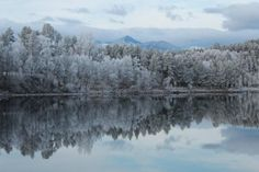 Winter in Rondane - Norway.