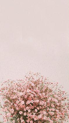 fond d& flores IPhone Background Pictures, Spring - Inside Korea J . Flor Iphone Wallpaper, Wallpaper Pastel, Spring Wallpaper, Phone Screen Wallpaper, Sunflower Wallpaper, Iphone Background Wallpaper, Aesthetic Pastel Wallpaper, Iphone Backgrounds, Aesthetic Wallpapers