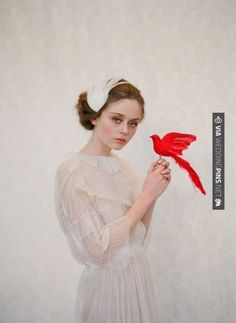 So cool - bride with red bird / Twigs and Honey / photographed by Elizabeth Messina | CHECK OUT MORE GREAT RED WEDDING IDEAS AT WEDDINGPINS.NET | #weddings #wedding #red #redwedding #thecolorred #events #forweddings #ilovered #purple #fire #bright #hot #love #romance #valentines