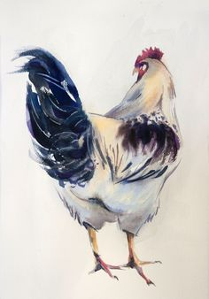 sm watercolor on paper SOLD- brigitte jambert – Brahma Chickens Watercolor Bird, Watercolor Animals, Watercolour Painting, Watercolors, Rooster Painting, Rooster Art, Chicken Painting, Chicken Art, Animal Paintings