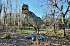 Tyrannosaurus rex & Triceratops horridus. - Taken in Chianciano Terme. (Toscana, Italia). (January 2017)