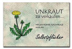 Hochwertiges Metallschild 30 x 20 cm aus Alu Verbund Unkraut zu verkaufen Deko Schild Wandschild