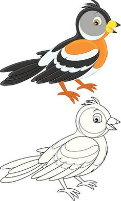 Brambling, color illustration and black and white outline on a white background Girly Drawings, Art Drawings For Kids, Colorful Drawings, Disney Drawings, Drawing For Kids, Easy Drawings, Bird Coloring Pages, Coloring Books, Bird Paper Craft