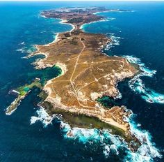 Check out this amazing aerial shot of Rottnest by @scottslawinski! by panpacificperth http://ift.tt/1L5GqLp