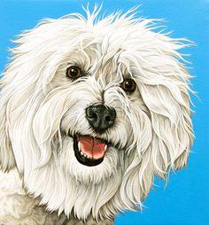 Custom Dog Portrait, 14x14 Pop Painting of Your Dog, Coton de Tulear Portrait, Hand Painted Portrait of your Purebred Dog