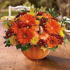 Teleflora's Country Pumpkin - by Richardson's Flowers & Gifts Pumpkin Bouquet, Pumpkin Flower, Pumpkin Floral Arrangements, Fall Arrangements, Fall Wedding Flowers, Fall Flowers, Autumn Decorating, Fall Decor, Pumpkin Centerpieces