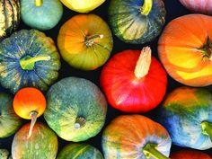 10 aliments à mettre dans son panier d'épicerie - Châtelaine Omega 3, Pumpkin, Vegetables, Food, Grocery Basket, Shopping, Meal, Pumpkins, Essen