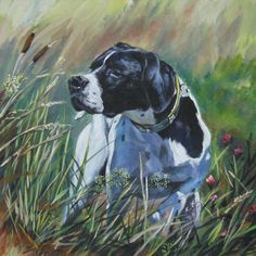English Pointer ~ Classic Look