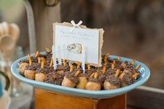 Acorn donut holes made for another fun Peter Rabbit-themed treat.  Source: Alex Michele Photography