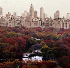 Central Park in the fall - can't wait to visit NYC again someday. Hopefully in the fall!