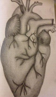 Anatomical heart @bydialugal