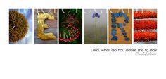 "SALE ! ! ! ""Desire"" Unique Art, Food Photography, Nice, Quotes, Blog, Travel, Quotations, Viajes, Quirky Art"