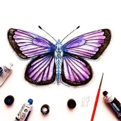 """Day 9 of my challenge #100daybutterflies #100daychallenge """"Silver-studded blue male butterfly, can be found in Europe, Asia and Japan!  #arts_help #art_we_inspire #imaginationarts #artdaily #craftsposure #challenge #art #painting #illustration #butterfly #handdrawnart #life #nature #phooftheday #doodle #love #colorful #rtistic_feature #featuregalaxy #creative_instaarts  #me #worldbutterflies #happy #watercolor #acrylic #paint #artist_sharing #phanasu @craftsposure"""