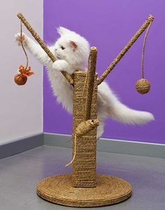 Dekoration PLANET OF THE CATS Cat and Winter 2013 Pvc Figure Chair Wonder Festiv