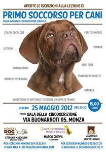 Pronto soccorso per cani. Venerdì 25 a Monza