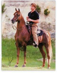 Patrick Swayze, on his beautiful Arabian stallion.