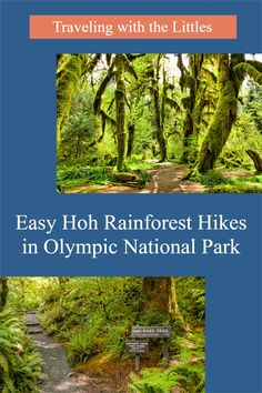 The Hoh Rainforest is a great example of a temperate rainforest. It's beautiful, wild, ethereal, and has a number of easily accessible hikes. Best thing about the Hoh Rainforest are the easy hikes and its extraordinary uniqueness. It is absolutely worth the trip! #familytravel #familyhikes #Hohrainforest #olympicnationalpark #PNW #CBtravels #travelingwiththelittles Us National Parks, Banff National Park, South America Travel, North America, Hiking Photography, Adventure Activities, Worldwide Travel, Outdoor Adventures, Usa Travel